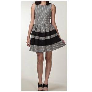 Closet London daisy print fit & flare dress